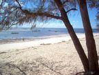 Travel guide Malindi