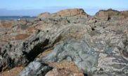 Passeio Geológico da Foz  do Douro