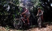 Jungle Mountain Biking