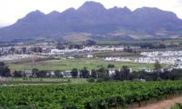 Stellenbosch Franschhoek and Paarl Valley Wine Day Trip