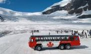Columbia Icefield Tour from Lake Louise
