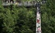Grouse Mountain Capilano Suspension Bridge Tour 