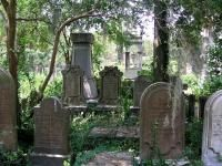Explore Haunted Charleston