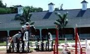 Half Moon Equestrian Centre 