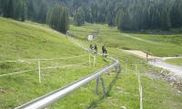 Sommerrodelbahn 