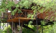 Hotel Pezulu Tree House Game Lodge