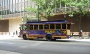 Daily Trolley Tour