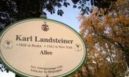 Karl Landsteiner Allee 