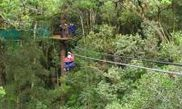 Tsitsikamma Canopy Tour 