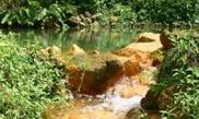 Clabony Sulphur Spring 