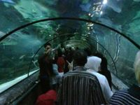 SeaWorld Indonesia