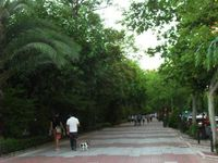 Paseo de Cnovas