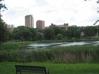 Loring Park