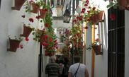 Calleja de las Flores 