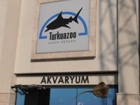 Turkuazoo Aquarium