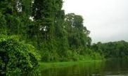 Parque Nacional de Tortuguero 