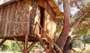 Hotel Saban Treehouses