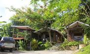Htel Red Frog Villas