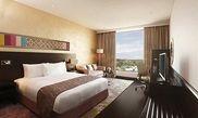 Hotel Hilton Jaipur