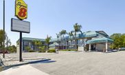 Hotel Super 8 Motel Clearwater - US Hwy 19 N