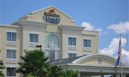 Htel Holiday Inn Express Hotel & Suites Tampa-I-75  Bruce B Downs