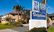 Hotel Dolphins