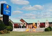 Comfort Inn Petersburg