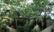 La Serre Amazonienne
