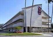 Red Roof Inn Tampa - Brandon