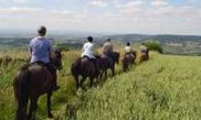 Boltby Trekking & Trail Riding Centre