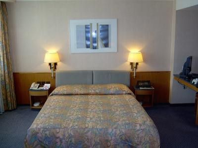 Crowne Plaza Zurich (Room and features)
