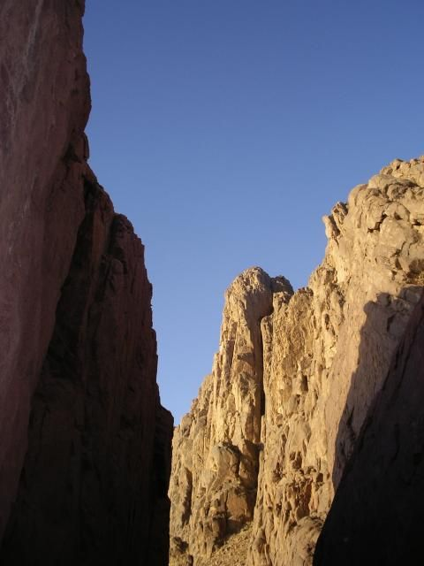 Mont Sinai (Detail)