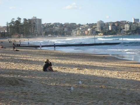 Manly Beach (View)
